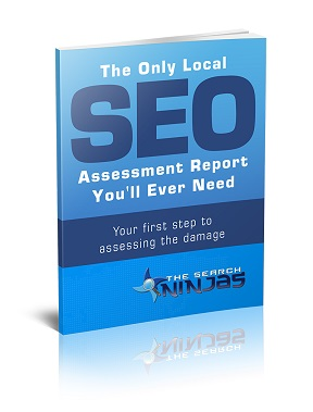 SEO_search_ninjas_cover_backless